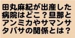 田丸麻紀が出産した病院はどこ?旦那とアンミカやサマンサタバサの関係とは?